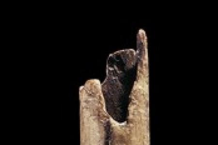 Flute - 31000 BC